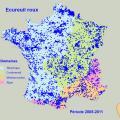 Carte de répartition de l'écureuil roux en France 2005-2011