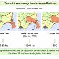Répartition de l'Écureuil à ventre rouge dans les Alpes-Maritimes.