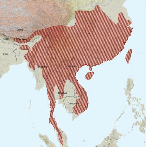 Carte de répartition : Écureuil de Pallas