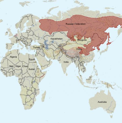 Carte de répartition : Tamia de Sibérie