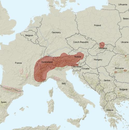 Carte de répartition : Marmotte des Alpes