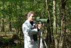 Observation directe des écureuils à la longue vue