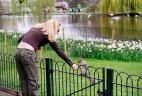 Écureuil gris nourri par un citadin dans un parc de Londres.